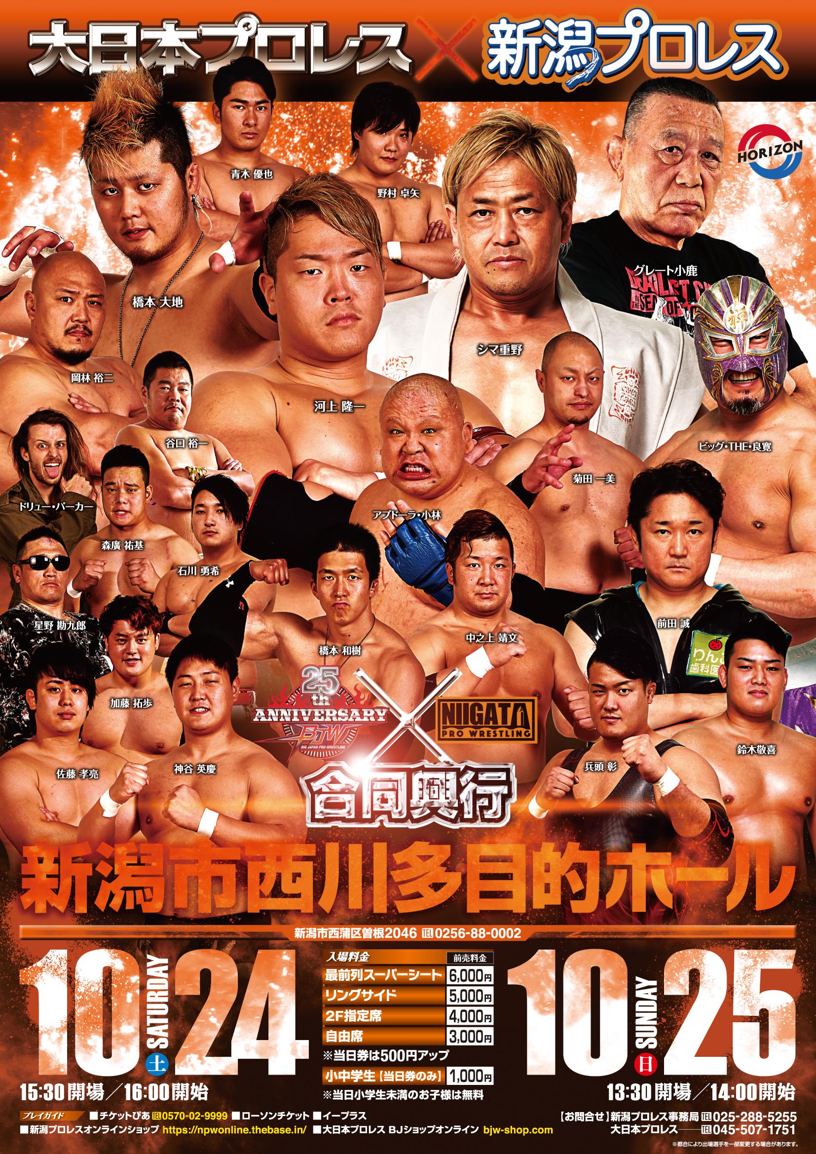 日本 プロレス 大
